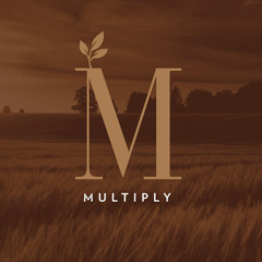 Multiply - Jersey Village