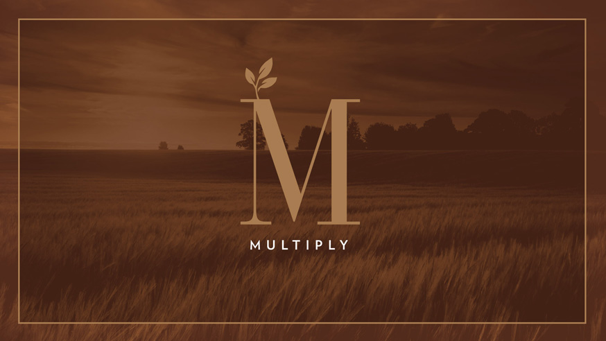 Multiply - North